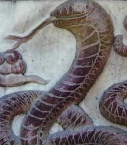 Год змеи 2013 для змеи